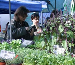 We Love Local – Our Top 5 Farmers' Markets